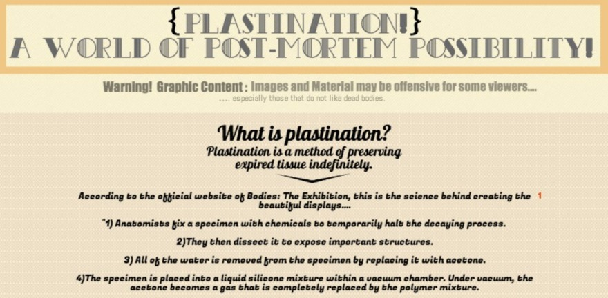 Plastination
